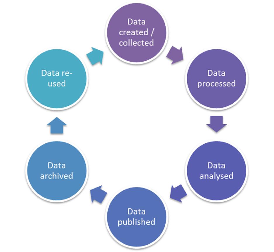 Yoda Data Lifecycle In Yoda